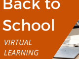 What Students and Teachers need for the Fully Virtual Classroom